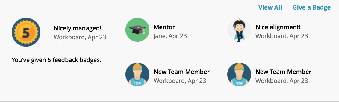 how to give teamspeak members badges
